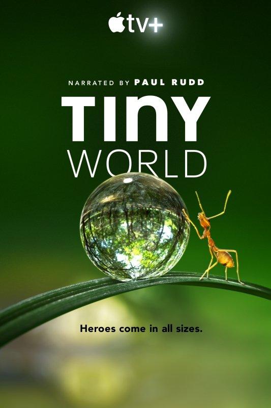 El tráiler de Tiny World la serie de Paul Rudd ya esta aquí