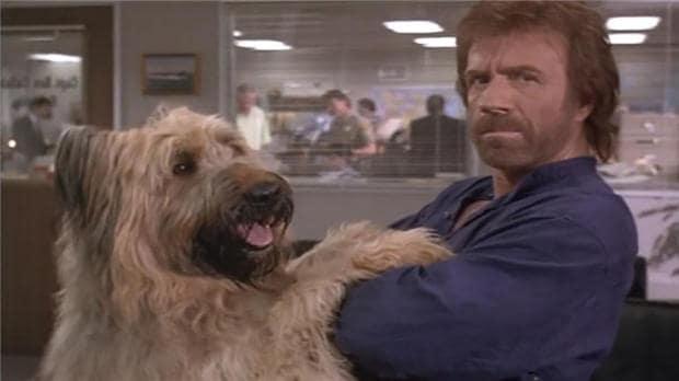 TRECE nos ofrece el mejor cine de acción con Chuck Norris